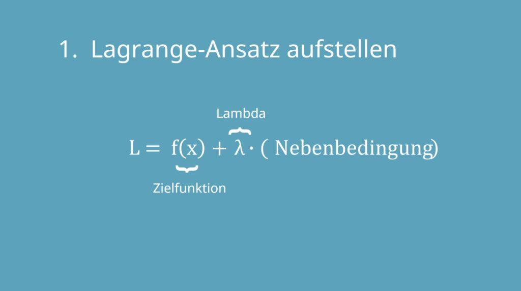 Lagrang Ansatz, Lagrange-Prinzip, Lagrange-Multiplikator