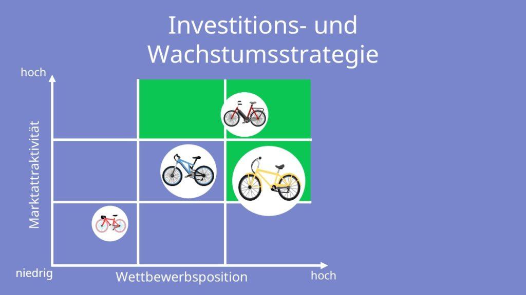McKinsey-Portfolio: Investitions- und Wachstumsstrategie