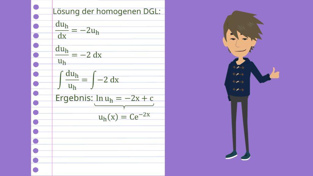 Bernoulli DGL Beispiel: Homogene Lösung