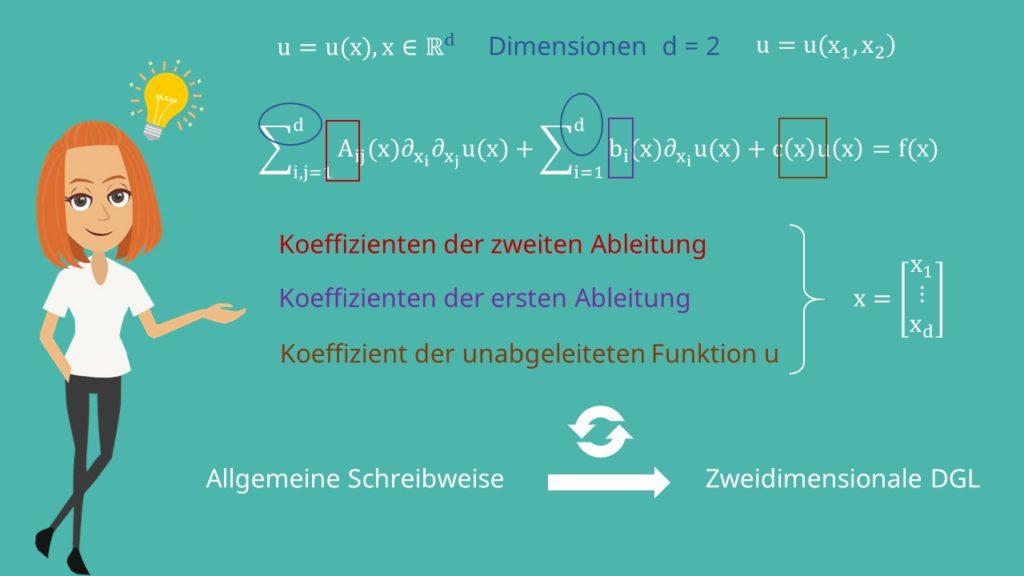 Vektor x bei differentialgleichungen