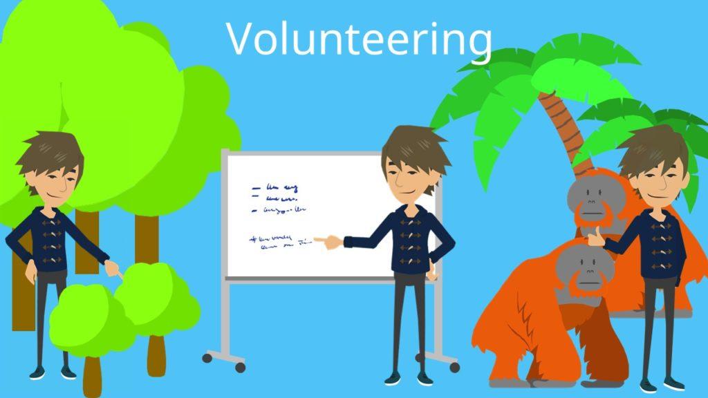 Au-pair, Volunteering