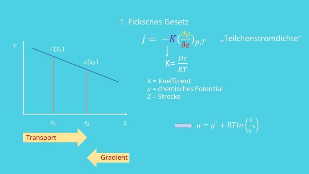 Ficksche Gesetze, Diffusion, Diffusiongesetz, Transport, Gradient, chemisches Potential, Gaskonstante