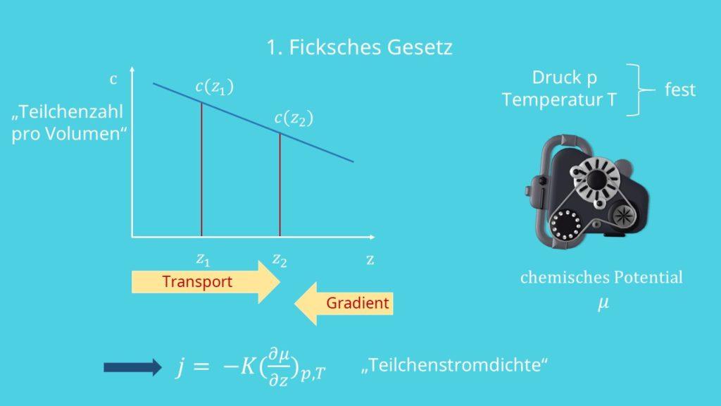 Ficksche Gesetze, Transport, Gradient, Teilchenzahl, Teilchenstromdichte, Diffusionsgesetz, Diffusion, Stofftransport