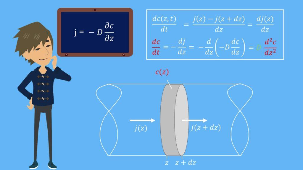 Ficksche Gesetze, 2 Ficksche Gesetze, Diffusion, Diffusionsgesetz, Zeit, Teilchenstromdichte, Modell, Diffusionskoeffizient