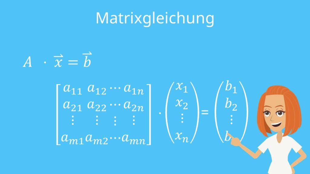 Cramersche Regel, Matrix, Matrixgleichung
