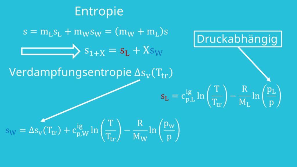 Entropie Formel