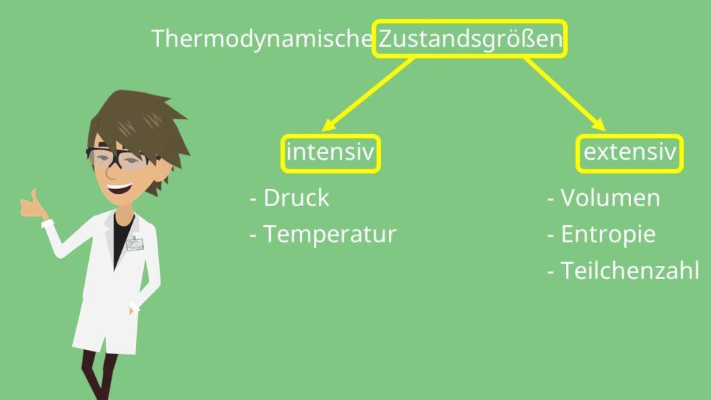 intensive Zustandsgrößen, extensive Zustandsgrößen, Druck, Temperatur, Volumen, Entropie, Teilchenzahl