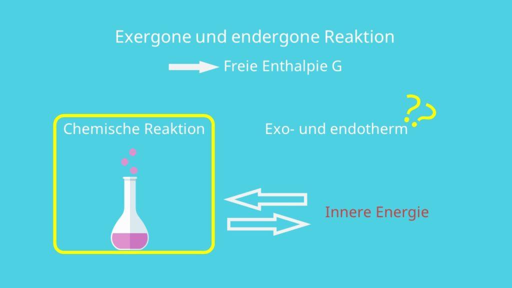 Exergon und Endergon