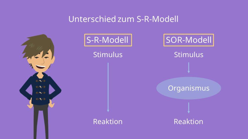 SR-Modell Stimulus Reaktion