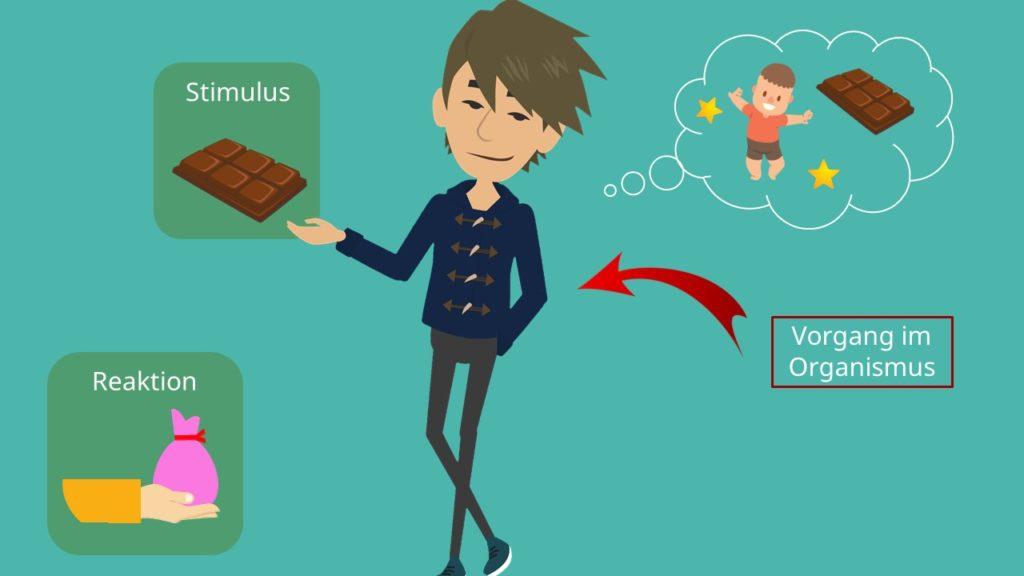Beispiel SOR Modell Stimulus Organismus Reaktion