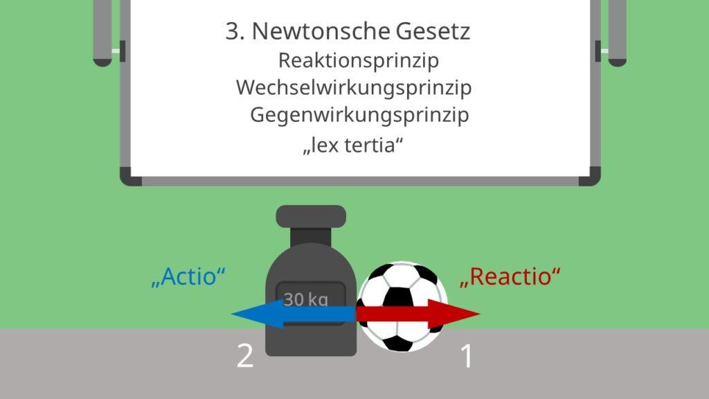 3. newtonsche gesetz, reaktionsprinzip, wechselwirkungsprinzip, gegenwirkungsprinzip, lex tertia, actio reaction