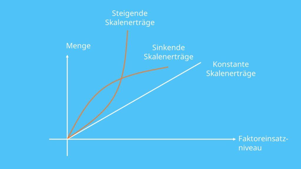 Skalenerträge berechnen, Skaleneffekte, Skalenertrag