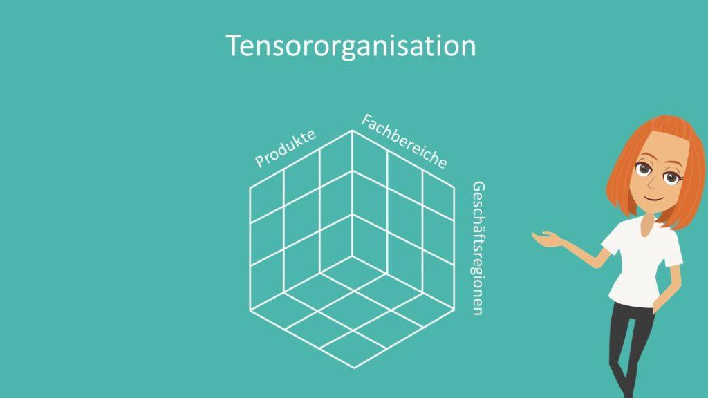 Mehrliniensystem, Organigramm,