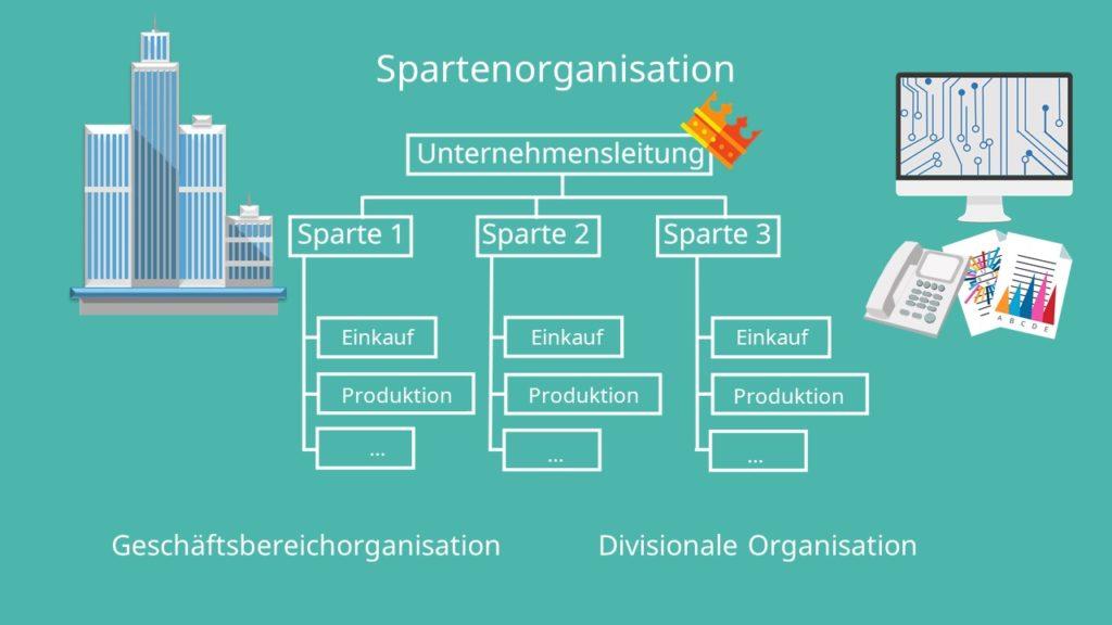 Spartenorganisation Organigramm