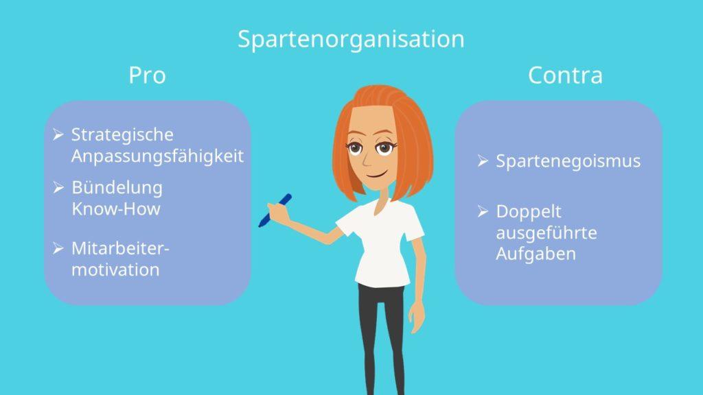 Spartenorganisation Vor- und Nachteile