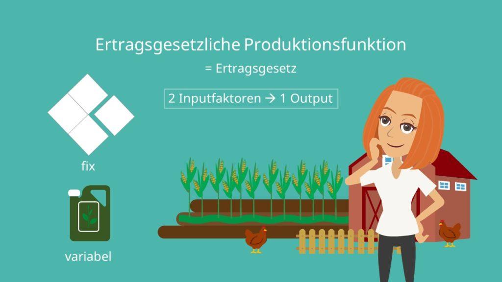 Ertragsgesetzliche Produktionsfunktion, Limitationale Produktionsfunktion