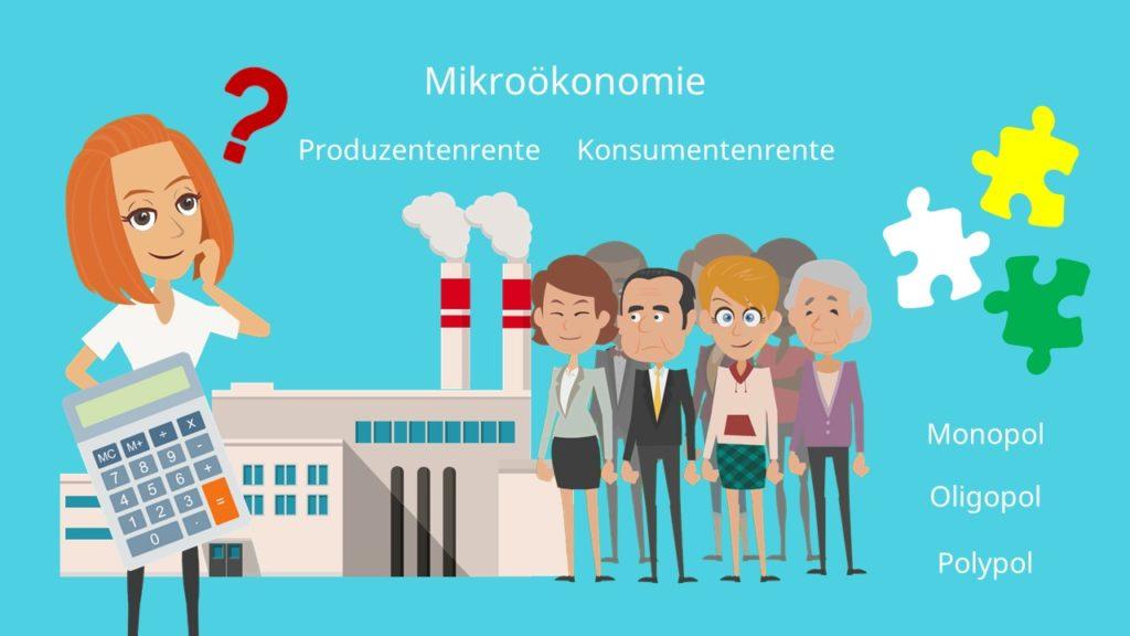 Mikroökonomie, Grundbegriffe, Übersicht, Mikroökonomik