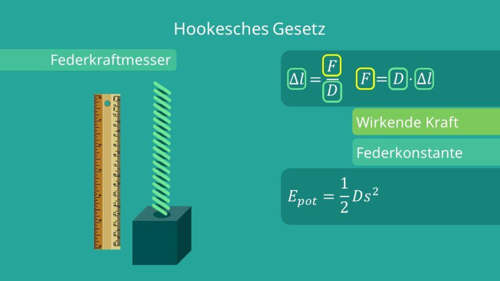 Hookesches Gesetz, Federkraftmesser, Hookesche Formel, potentielle Energie, Elastizität, Gravitation, Federkonstante