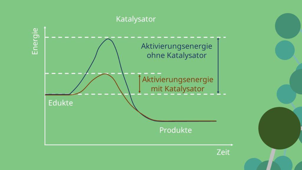 Haber Bosch Verfahren, Hauptreaktion, Katalysator