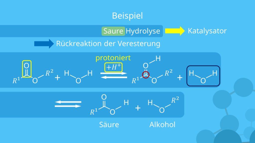 Hydrolyse, Saure Hydrolyse, Katalysator, Carbonsäureester