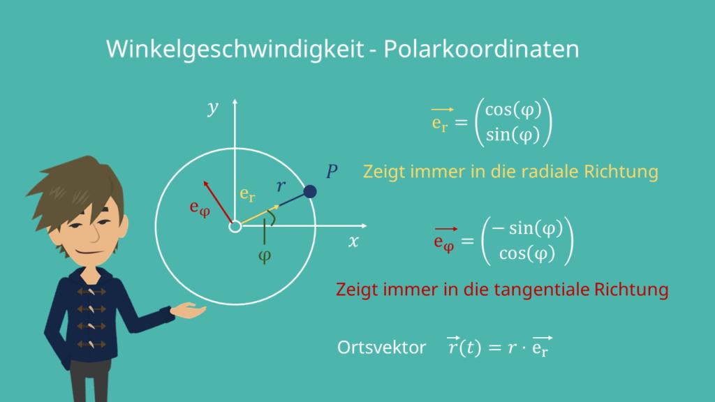 Winkelgeschwindigkeit, Einheitskreis, Ortsvektor, Tangente, Radius, Winkelbeschleunigung, Radius