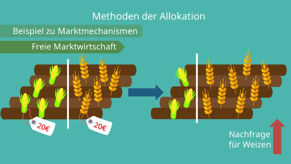 Beispiel zu Marktmechanismen, Allokation, Freie Marktwirtschaft