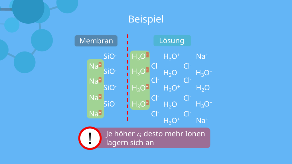 Potentiometrie - Schematische Darstellung der Doppelschicht