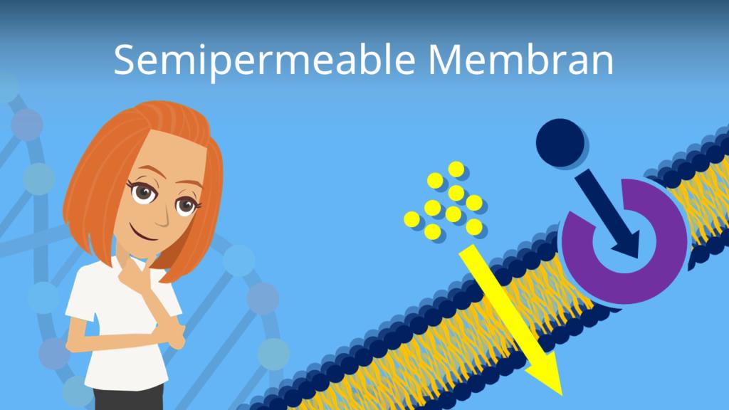 Zum Video: Semipermeable Membran