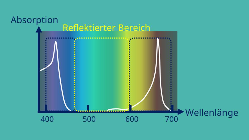Absorptionsspektrum, Chlorophyll a