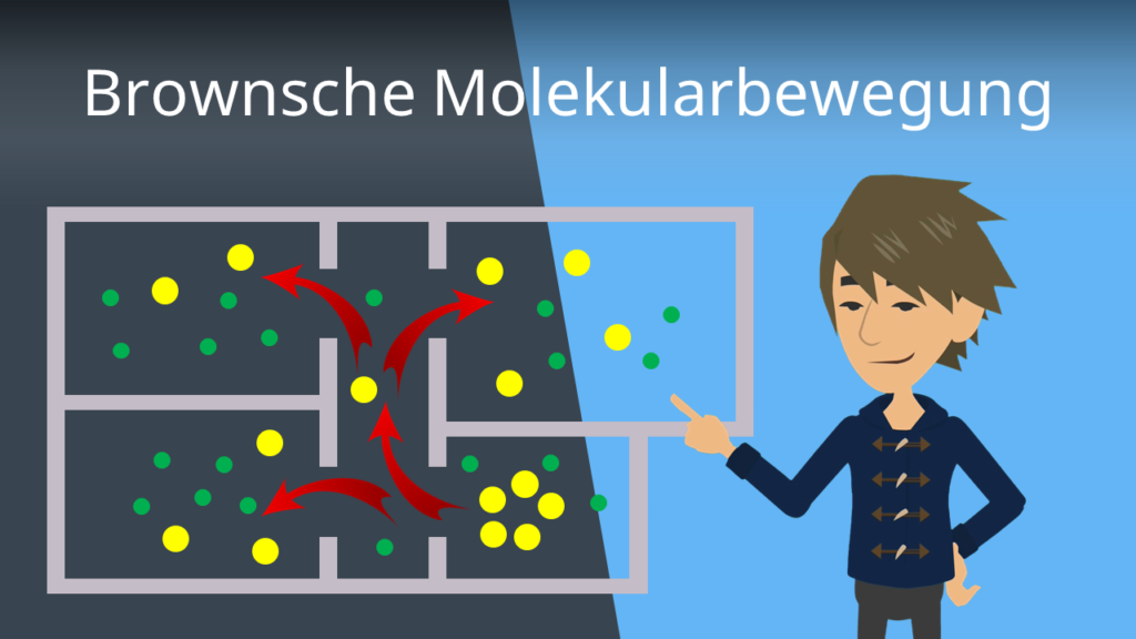 Zum Video: Brownsche Molekularbewegung