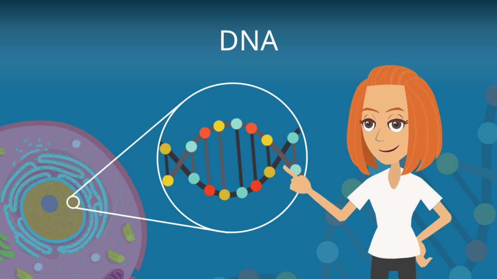 Zum Video: DNA