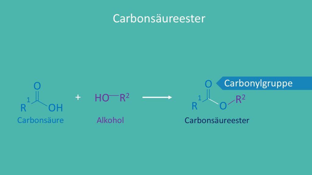 Ester, Carbonsäure, Alkohol, Carbonylgruppe, Carboxylgruppe