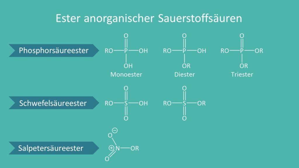 Sauerstoffsäuren, Phosphorsäureester, Schwefelsäureester, Salpetersäureester, Monoester, Diester, Triester