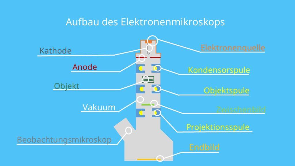 Aufbau des Elektronenmikroskops, Mikroskop, Transmissionselektronenmikroskop, Rasterelektronenmikroskop,Spule