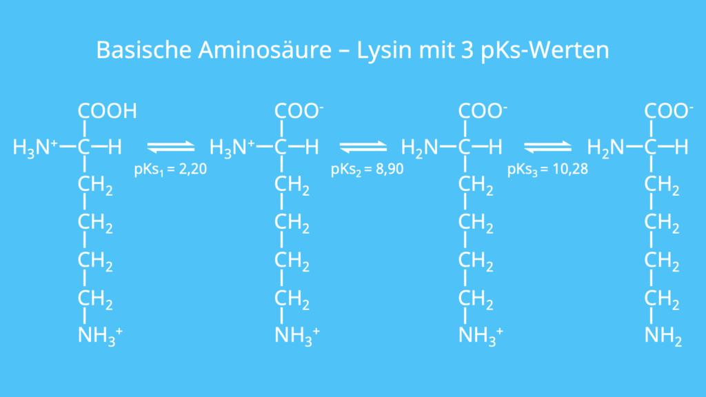 Basische Aminosäure, Lysin, 3 pKs-Werte, pKs, basische Zwitterionen, basische Gruppe, sauer, basisch