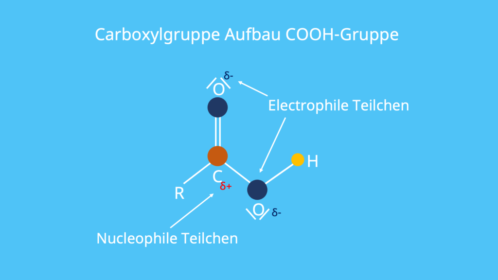 Carboxylgruppe, Aufbau, COOH-Gruppe, elektrophile Teilchen, nucleophile Teilchen