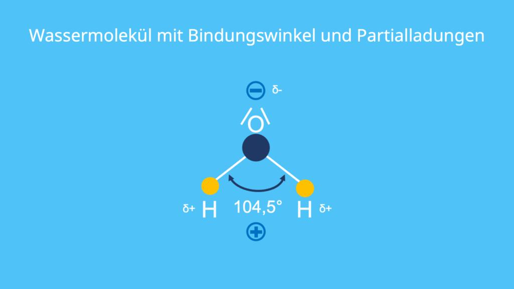 Wassermolekül, Bindungswinkel, Partialladung, Wasser, H2O