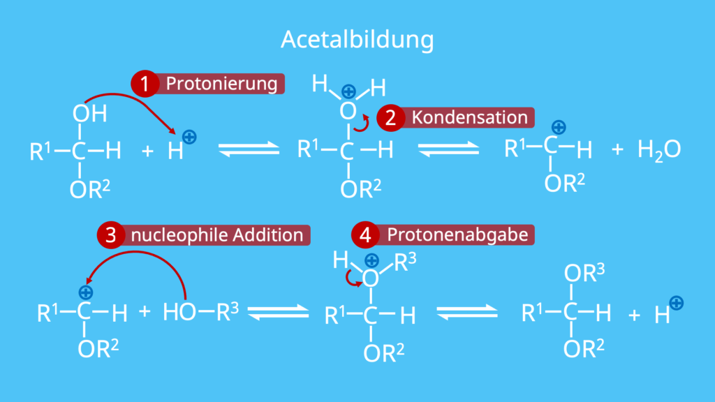 Acetalbildung, Acetal, 4 Schritt Mechanismus
