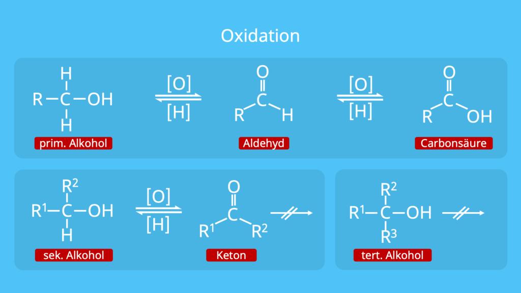 Oxidation von Alkoholen, primär, sekundär, tertiärer Alkohol