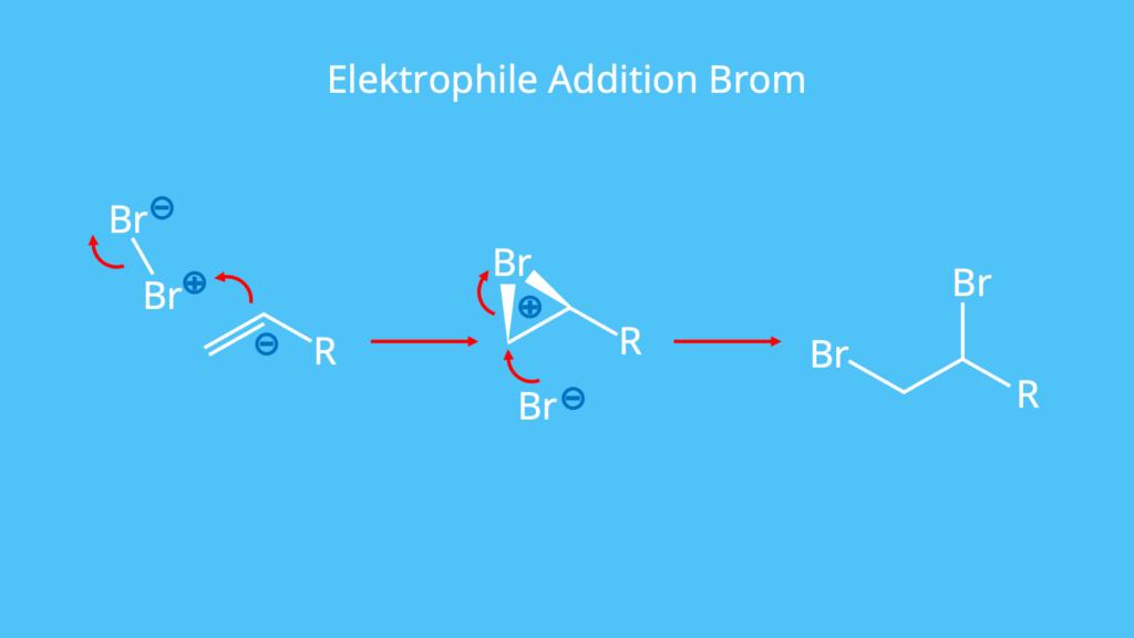 Brom, Elektrophile Addition, Doppelbindung, polarisiert, Bromonium-Ion, Bromaddition