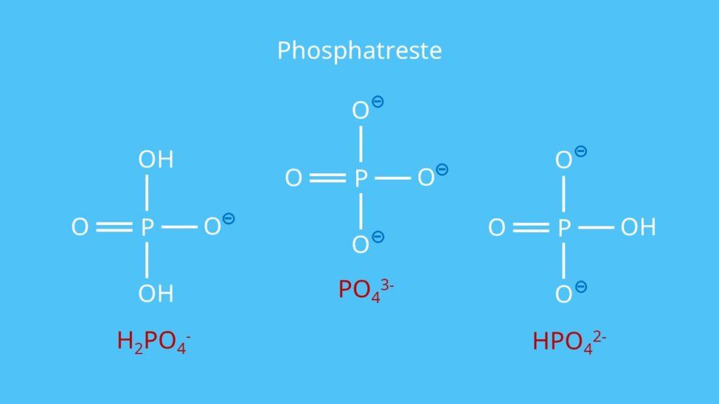 Phosphatreste, RNA, DNA, Nukleotid, Phosphorsäurerest, Phosphatgruppe