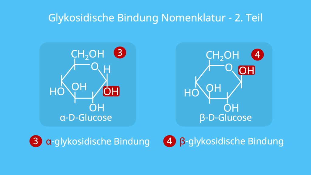 Glykosidische Bindung Nomenklatur, Benennung, Namensbildung