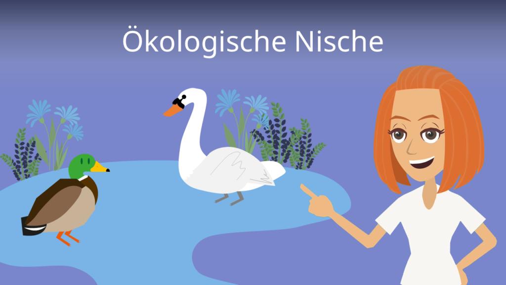 Zum Video: Ökologische Nische