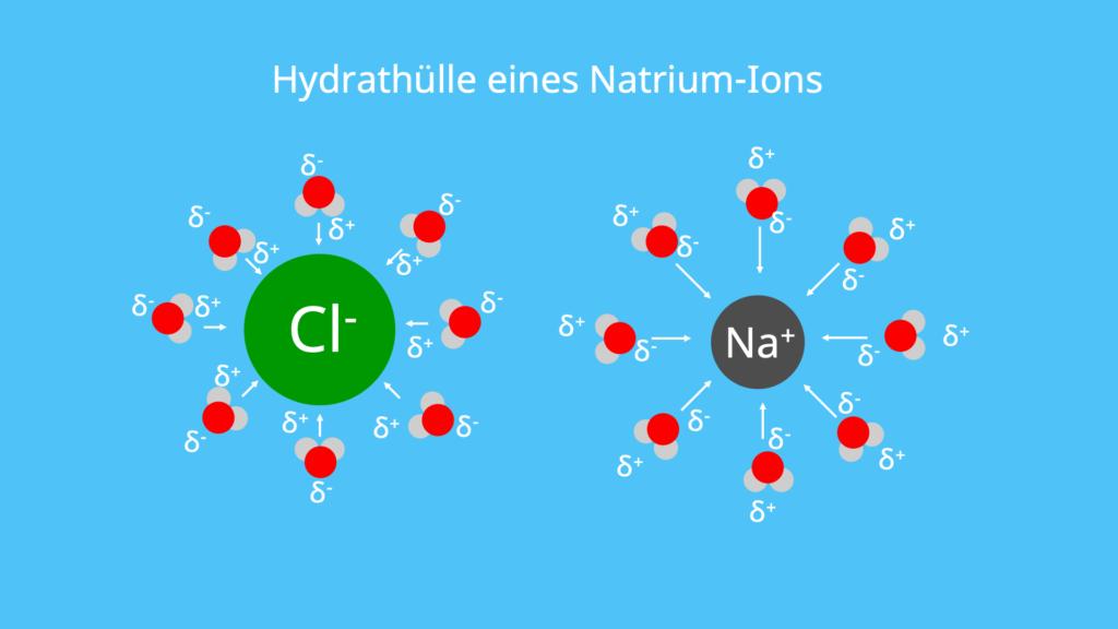 Hydration, Ionenradius, Hydratisiert, Hydratisieren, Hydratisierte Ionen