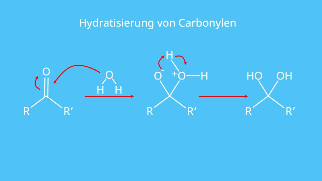 Hydratisieren, Carbonyl, Wasser, Diol, Addition