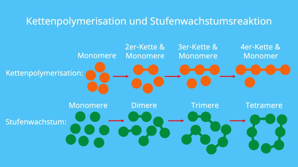 Polymerisation, Kettenpolymerisation, Stufenwachstumsreaktion, radikalische Polymerisation, Polyaddition, Polykondensation, Polymer, ionische Polymerisation