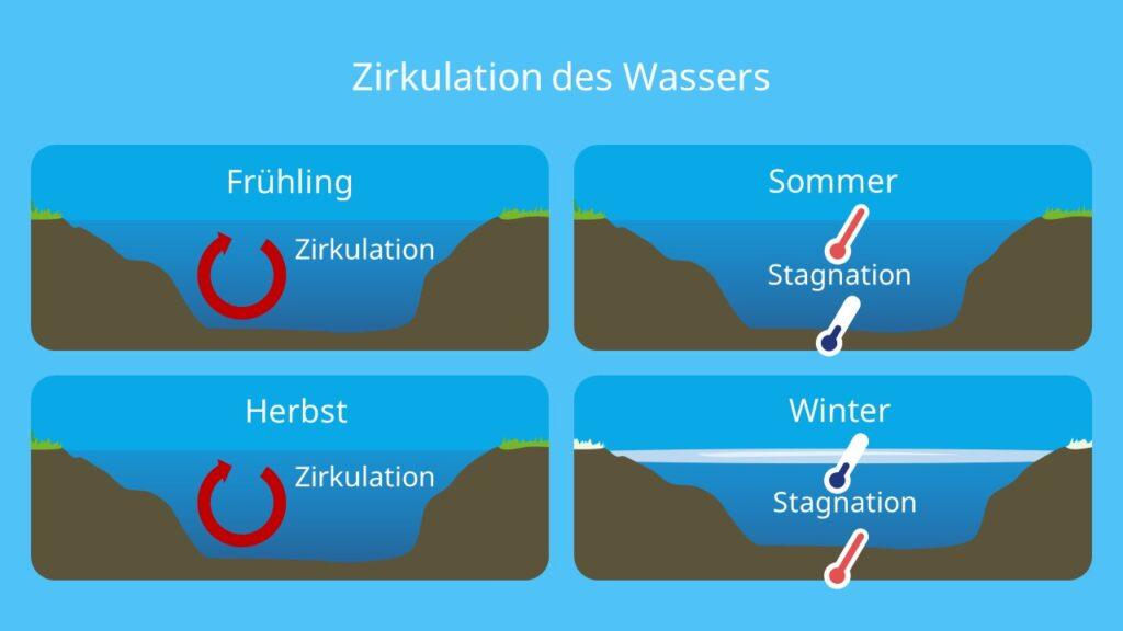 Zirkulation See, Stagnation, Temperaturunterschiede, Ökosystem See, Wasser, Jahreszeiten