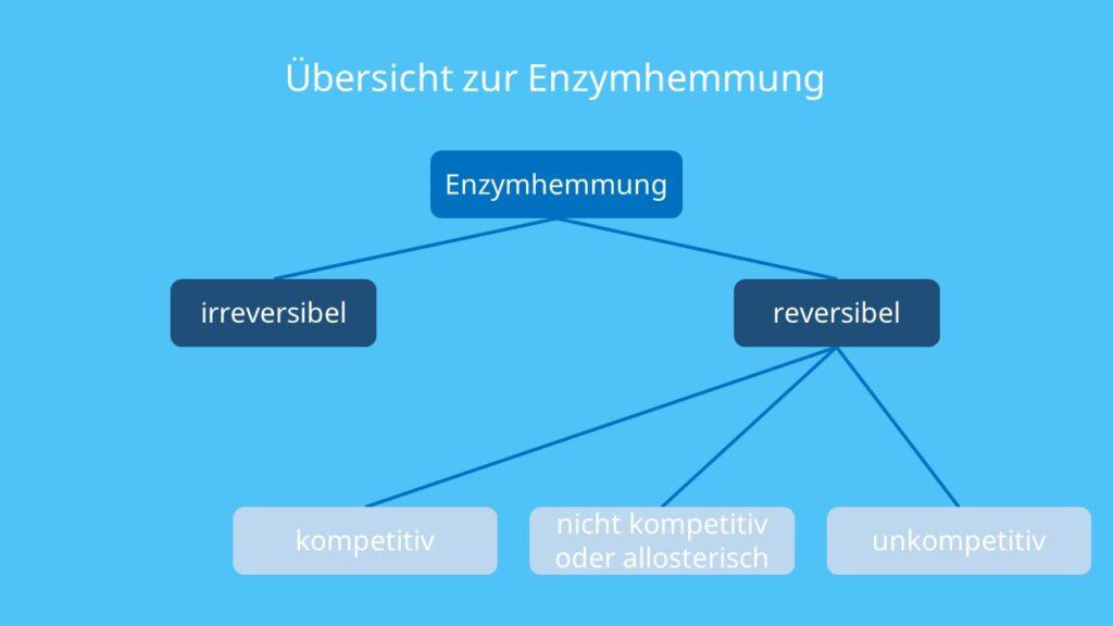 kompetitive Hemmung, nicht kompetitive Hemmung, allosterische Hemmung, unkompetitive Hemmung, reversible Enzymhemmung, irreversible Enzymhemmung, Hemmung von Enzymen