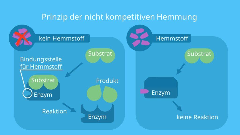 allosterische Hemmung, allosterisches Zentrum, allosterisch, aktives Zentrum, Enzymhemmung