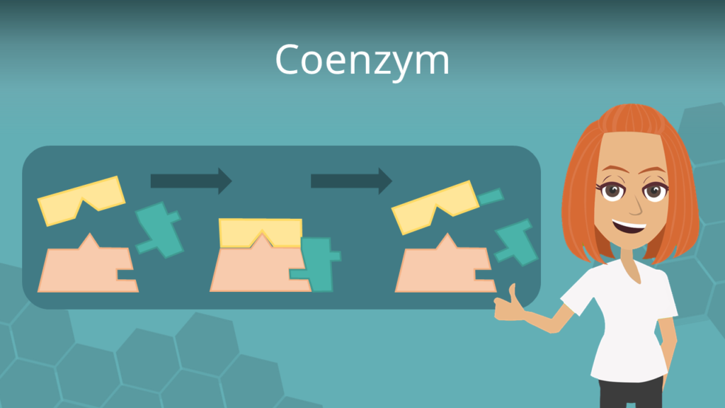 Zum Video: Coenzym